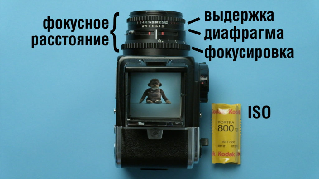 Выдержка, диафрагма, фокусировка, фокусное расстояние и ISO на примере фотоаппарата Hasselblad